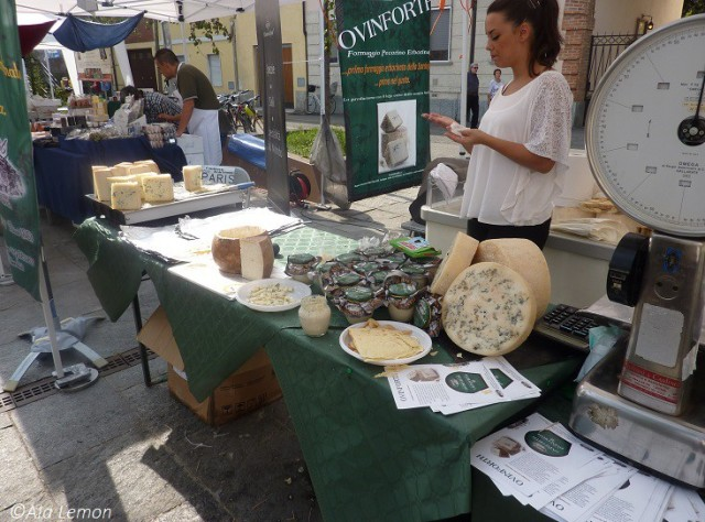 Sagra - fromage 6